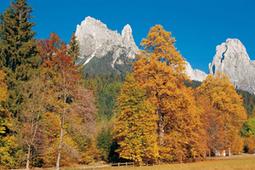 Foliage d'#autunno in #Italia: eventi e luoghi in cui ammirarlo   www.consulenteturisticolocale.it   Scoop.it
