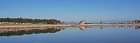Meandre demana a Sant Fruitós que no «mercadegi» amb el Parc de l'Agulla | #territori | Scoop.it