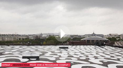Une vidéo très intéressante sur la génèse et l'installation de l'oeuvre monumentale de Lena Nyadbi sur le toit de la médiathèque du musée du quai Branly | Art Aborigène (Blog) | Pat' | Scoop.it