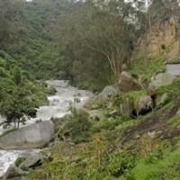 Nuevo llamado de atención a Petro por retraso en descontaminación de Río Bogotá | Noticias día @ día | Regiones y territorios de Colombia | Scoop.it