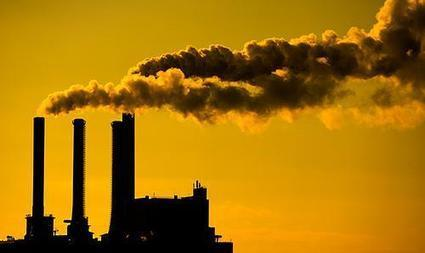 Power Past Coal - WildEarth Guardians | Introduce new course in schools called COMPASSION | Scoop.it