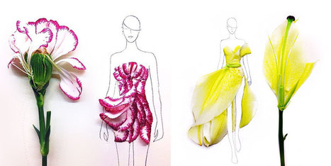 Designer Turns Real Flower Petals Into Fashion Illustrations | nomorbo | Scoop.it