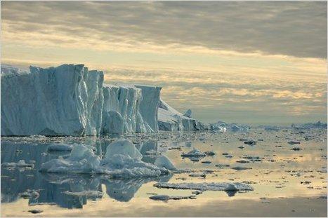 Small Boat, Big Mission: An Arctic Whale Survey   Inuit Nunangat Stories   Scoop.it