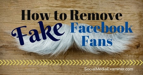 How to Remove Fake Facebook Fans : Social Media Examiner | CIM Academy Integrated Communications | Scoop.it