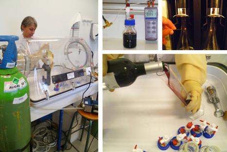 L'évolution du vin bouteille ouverte : l'azote aussi efficace que l'argon selon une étude | Winemak-in | Scoop.it