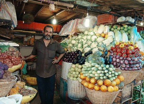 With The First All-Organic State, India Soars Ahead Of The US | Citizens' Environmental Coalition (Houston) | Scoop.it