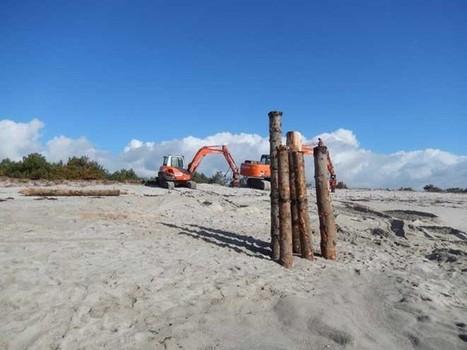 Erosion du littoral.  Des remparts contre la houle | L'environnement en Bretagne | Scoop.it