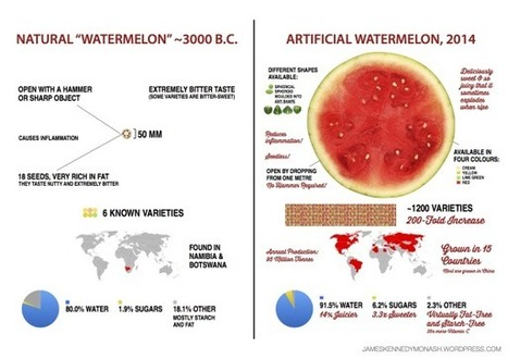 Artificial vs Natural Watermelon & Sweetcorn | Geography education in Australia | Scoop.it