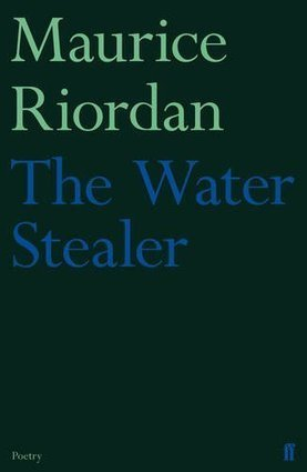 Five Remarkable Poetry Collections from 2013 | The Irish Literary Times | Scoop.it