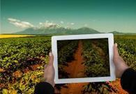 Agriculture performante et durable | Irstea | Agriculture durable et protection des cultures | Scoop.it
