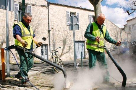 Le débat autour des herbes folles est relancé - SudOuest.fr | Nature en Ville | Scoop.it