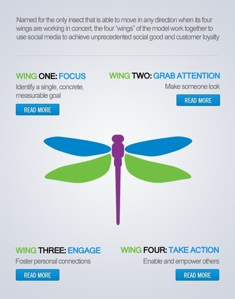 """The """"Dragonfly Effect"""" Model   Nonprofit and Business Management   Scoop.it"""