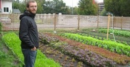 Canadian Urban Farmer Grows 50,000 Lbs Of Food On Less Than 1 Acre Of Land | Aquaponics & Permaculture | Scoop.it