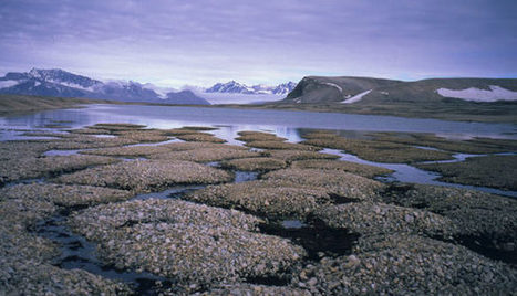 Permafrost Thaw in the Spotlight | All about water, the oceans, environmental issues | Scoop.it