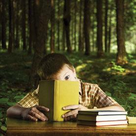 Primal Brain in the Modern Classroom: Scientific American   ASD in the Classroom   Scoop.it