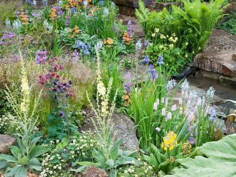 Garden Pest Control | Gardening | Scoop.it