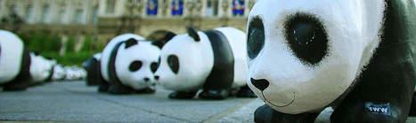 Documentaliste H/F WWF - CDD - Paris | Presse Design et Emploi Dévt Durable | Scoop.it