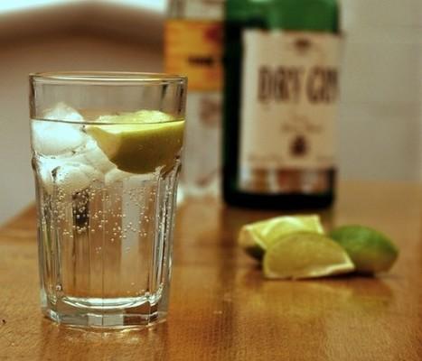 ¿Sigues yendo al gimnasio? ¡Pringao! Entre cinco y doce gin-tonics al día equivale a dos horas de gimnasio - Martin Cid. | GinTonics | Scoop.it