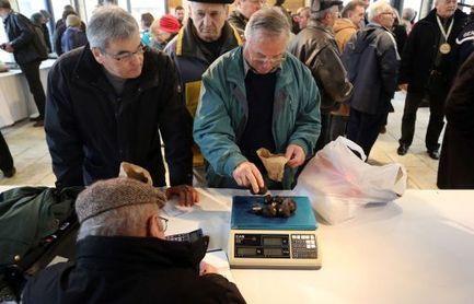 La saison de la truffe lancée en Dordogne à 800 € le kg - Charente Libre   Agriculture en Dordogne   Scoop.it