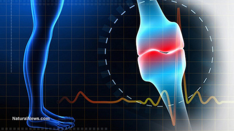 Vitamin D and osteoporosis: How this 'miracle' vitamin can restore ...   Optimum Strategies for Creativity and Longevity   Scoop.it