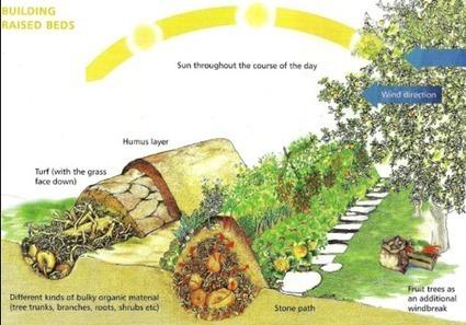 Duluth's Biggest Community Garden | Duluth Grill | In the garden | Scoop.it