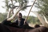 FAO -Nouvelles:Sahel: créer des communautés capables de résister aux chocs | SécuriteAlimentaireSahel | Scoop.it