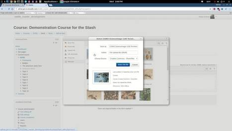 Incentivize Attention And Awareness In Moodle With The Stash Plugin | Moodle Best LMS | Scoop.it