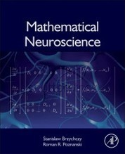 Mathematical Neuroscience - SciTech Connect | Social Neuroscience Advances | Scoop.it