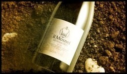 La Franciacorta di Mosnel - Into the Wine   Into the Wine   Scoop.it