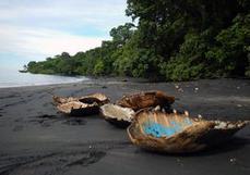 Parc naturel marin de Mayotte : lutte fructueuse contre le braconnage de tortues | Biodiversité & Relations Homme - Nature - Environnement : Un Scoop.it du Muséum de Toulouse | Scoop.it