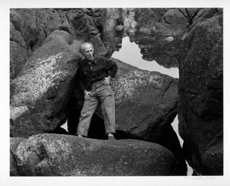 Edward Weston - edward-weston.com | L'actualité de l'argentique | Scoop.it