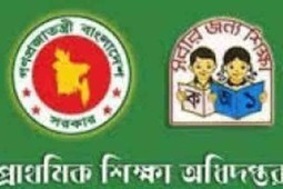 Primary Assistant teacher seat plan & Admit card online Download | BD Result Out | Film city and blockbuster | Scoop.it
