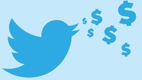 Twitter va-t-il lancer une formule pro payante sans publicité ?   Mon Community Management   Scoop.it