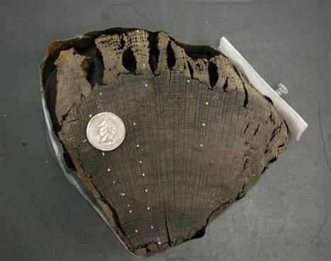 Origins Of Mysterious World Trade Center Ship Determined | Archivance - Miscellanées | Scoop.it