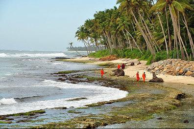 Sri Lanka: nirvana for beach lovers | Estrategias Competitivas en Turismo: | Scoop.it