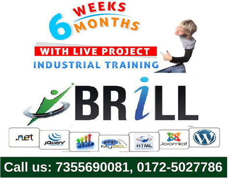 Six Months Industrial Training in Mohali | Brill Infosystems | Scoop.it