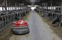 Dairy-farm robots replace some workers | Robots and Robotics | Scoop.it