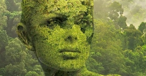 The Greening of the Self: The Most Important Development of Modern Times | The Integral Landscape Café | Scoop.it