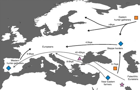 Ancient DNA and the rewriting of human history: be sparing with Occam's razor | MycorWeb Plant-Microbe Interactions | Scoop.it