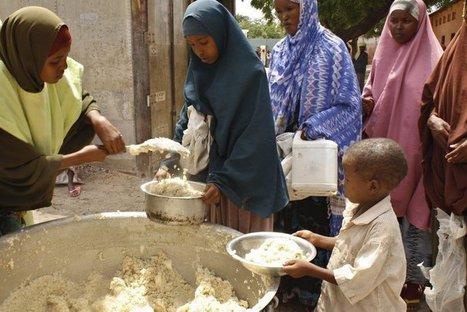 Somalie : pourquoi l'opinion ne suit toujours pas   Média et société   Scoop.it