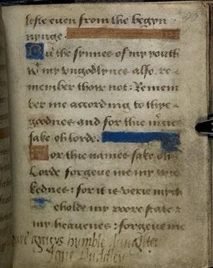 The Lives of Tudor Women Blog Tour – Tudor Women and Religion by Elizabeth Norton | Fabulous Feminism | Scoop.it