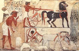 Ancient Egyptian Transport | EGY-KING | Discovering Ancient Egypt | Scoop.it