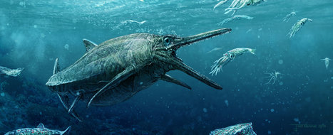 Jurassic 'Sea Monster' Emerges From Scottish Loch | Biodiversity protection | Scoop.it