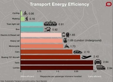 Quel est le mode de transport le plus efficace en ville   Ressources pour la Technologie au College   Scoop.it