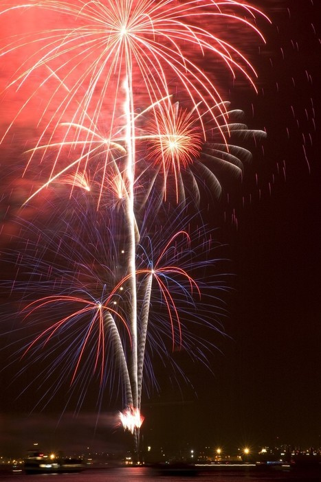 SeaWorld: Where Fireworks Are More Important Than Animals | Nature Animals humankind | Scoop.it