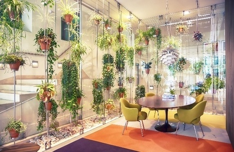 Interior designers must take a leaf out of architects' biophilic books   ReConnecting to Nature   Scoop.it