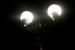 L'éclairage public, une menace pour la biodiversité ?   Bee'O Press   Scoop.it