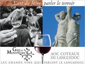 AUX GRANDS VINS DE FRANCE: L'AOC Languedoc Grés de Montpellier | Oenotourisme | Scoop.it