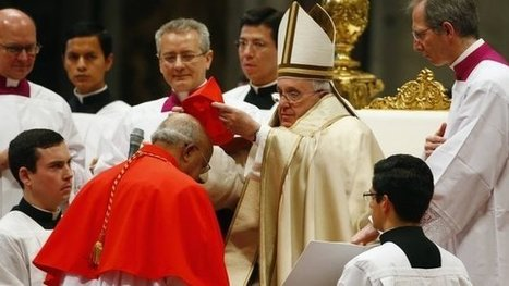 Pope Appoints 20 New Cardinals: How to Lead Change | It Comes Undone-Think About It | Scoop.it