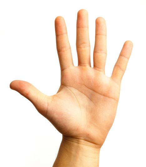 principal - cultura Sorda | Gesture,  and Sign Language And Deaf Culture | Scoop.it
